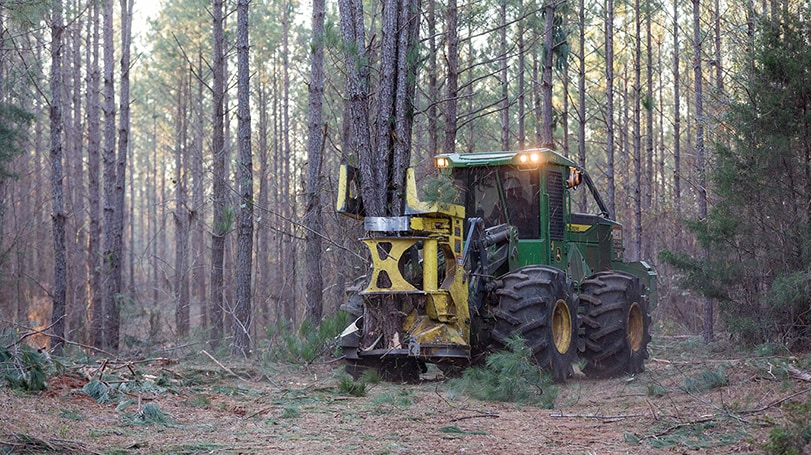 FD45 Felling Head in the field