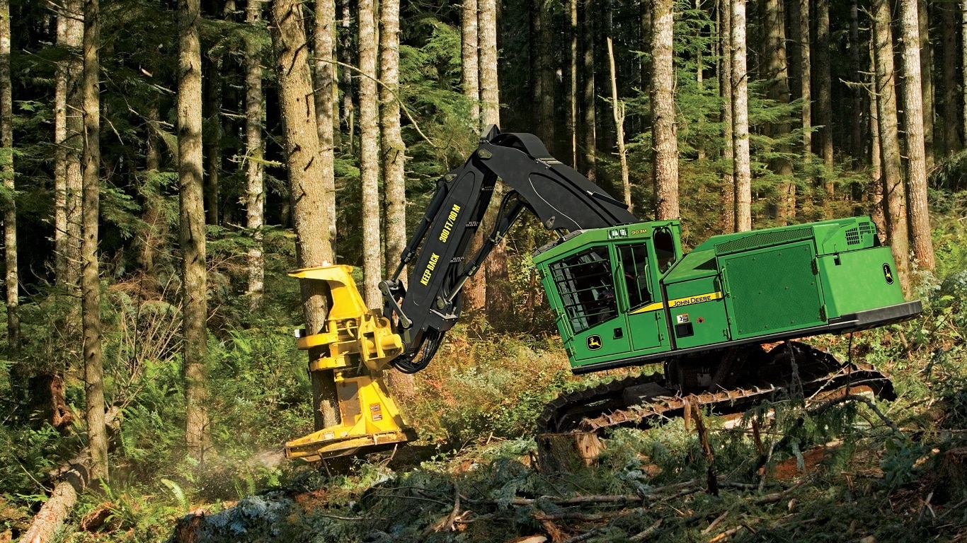 903M Tracked Feller Beuncher working in forest