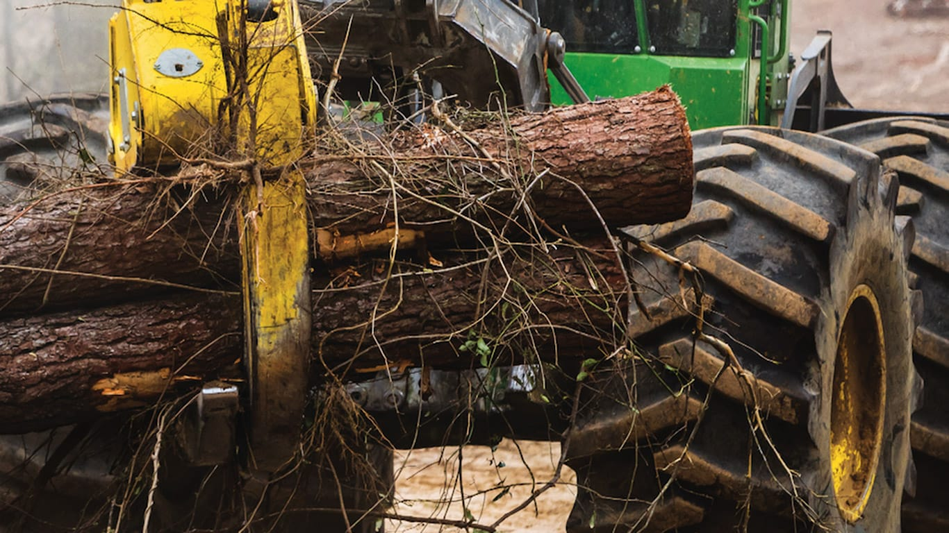 Skidder working