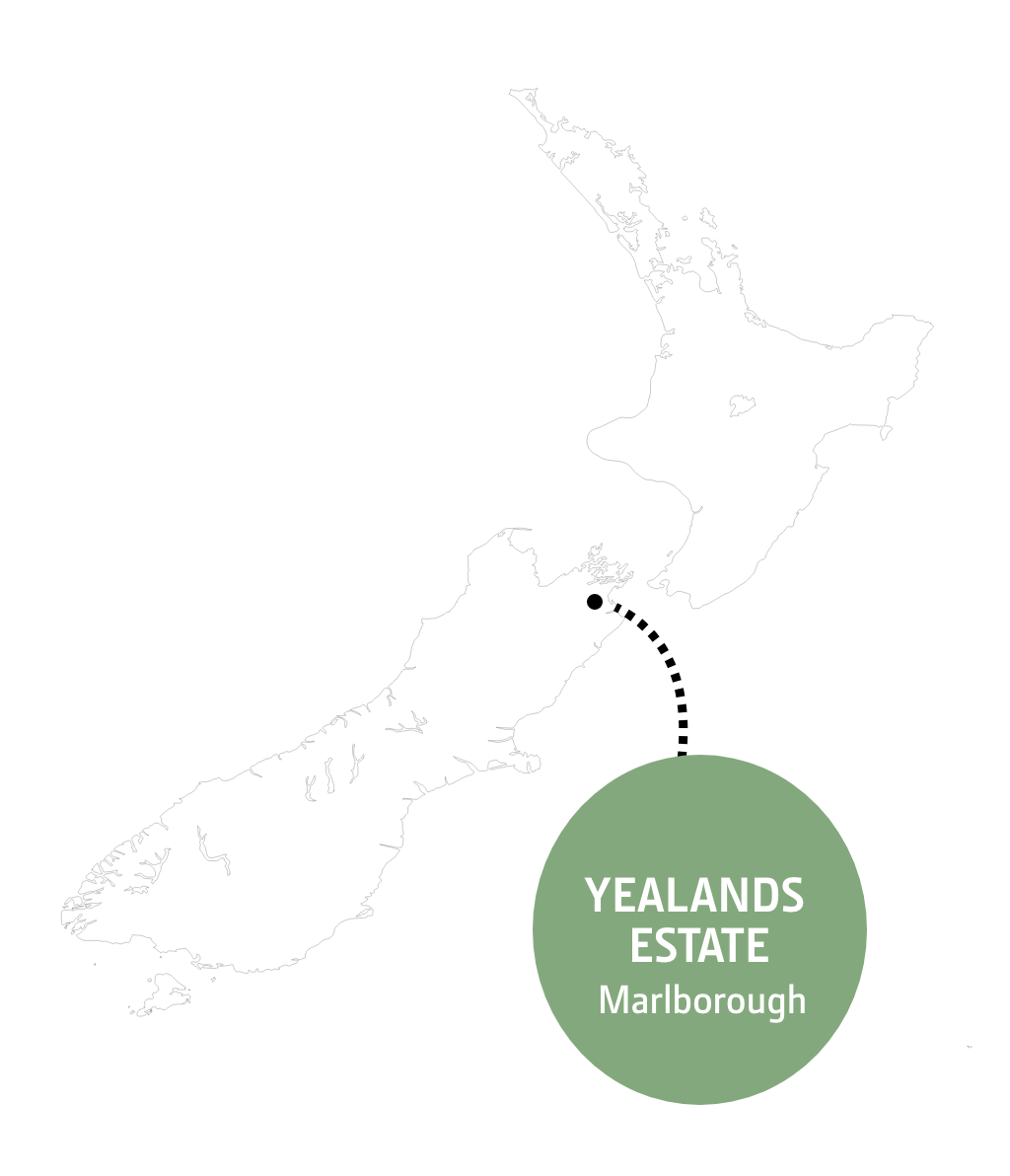 Yealands map