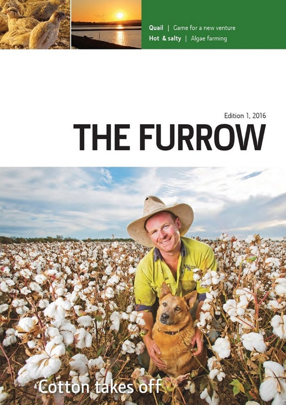 The Furrow - Issue 1, 2016
